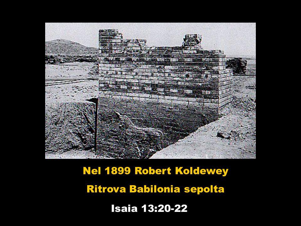 Ritrova Babilonia sepolta