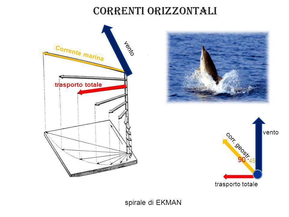 CORRENTI orizzontali 90 spirale di EKMAN vento Corrente marina