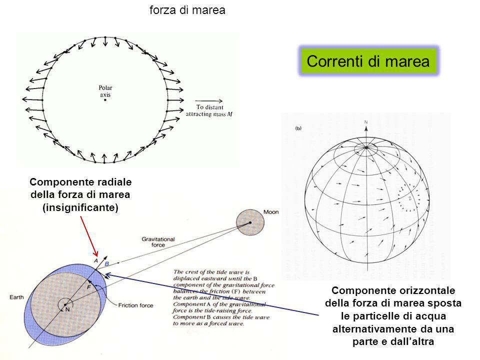 Correnti di marea forza di marea Componente radiale