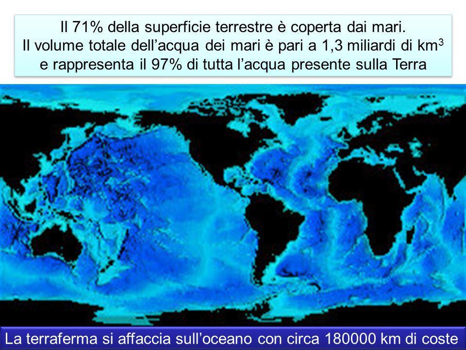 Il 71% della superficie terrestre è coperta dai mari.