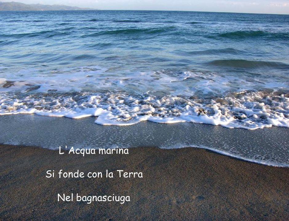 L Acqua marina Si fonde con la Terra Nel bagnasciuga