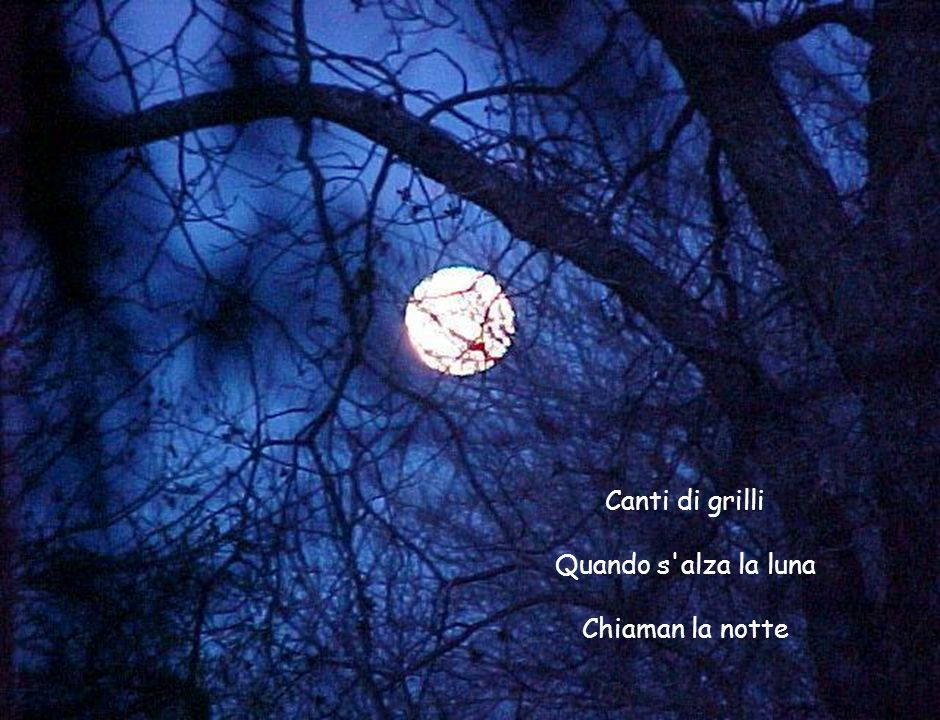 Canti di grilli Quando s alza la luna Chiaman la notte