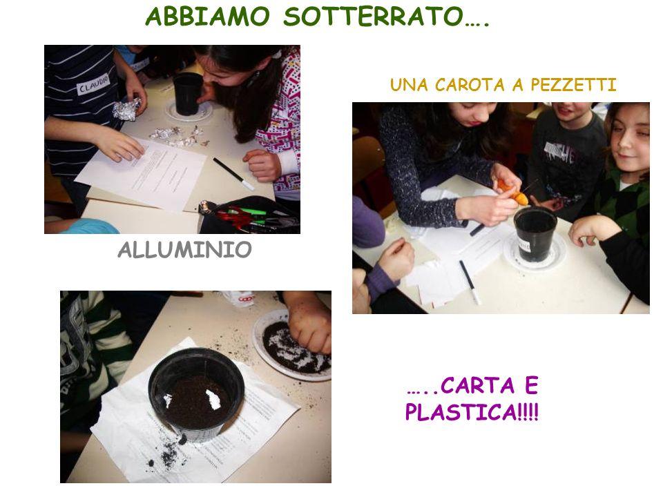 ABBIAMO SOTTERRATO…. ALLUMINIO …..CARTA E PLASTICA!!!!
