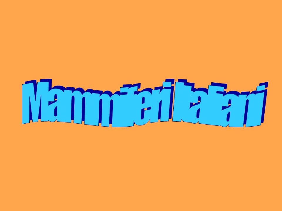 Mammiferi Italiani