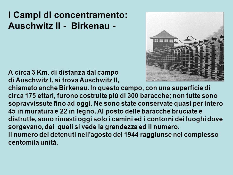 I Campi di concentramento: Auschwitz lI - Birkenau - A circa 3 Km