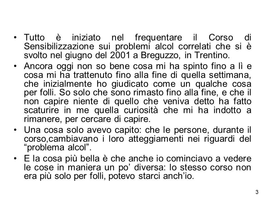 Tutto è iniziato nel frequentare il Corso di Sensibilizzazione sui problemi alcol correlati che si è svolto nel giugno del 2001 a Breguzzo, in Trentino.