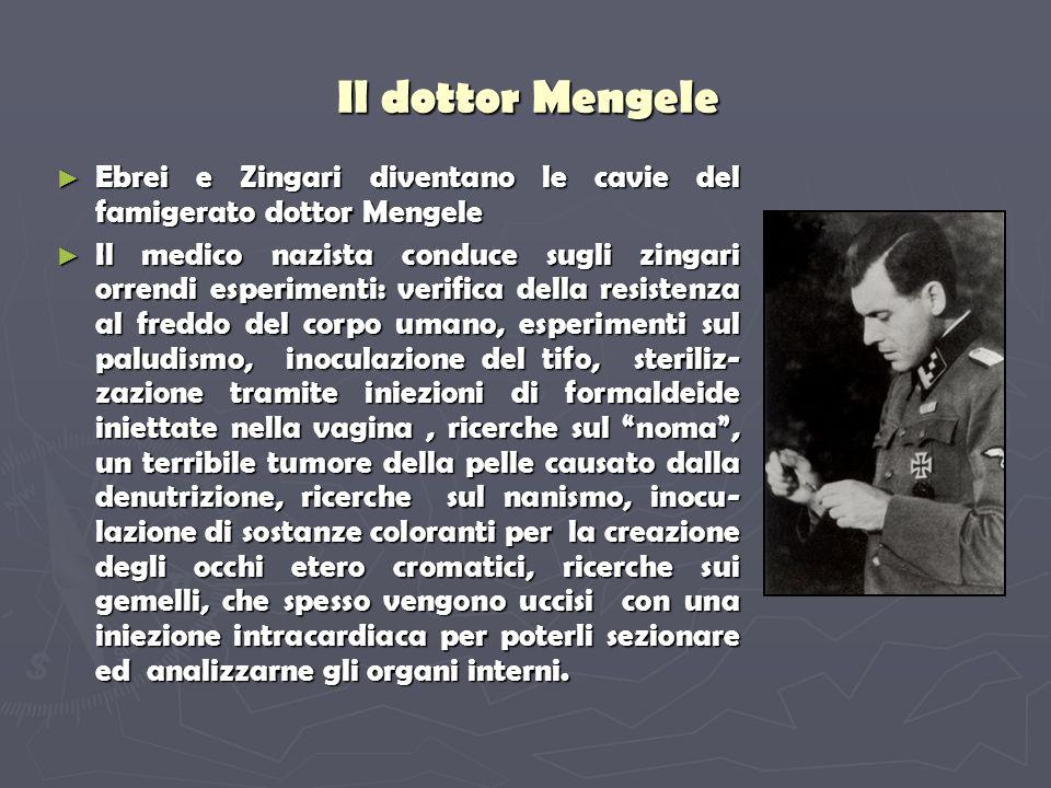Il dottor Mengele Ebrei e Zingari diventano le cavie del famigerato dottor Mengele.