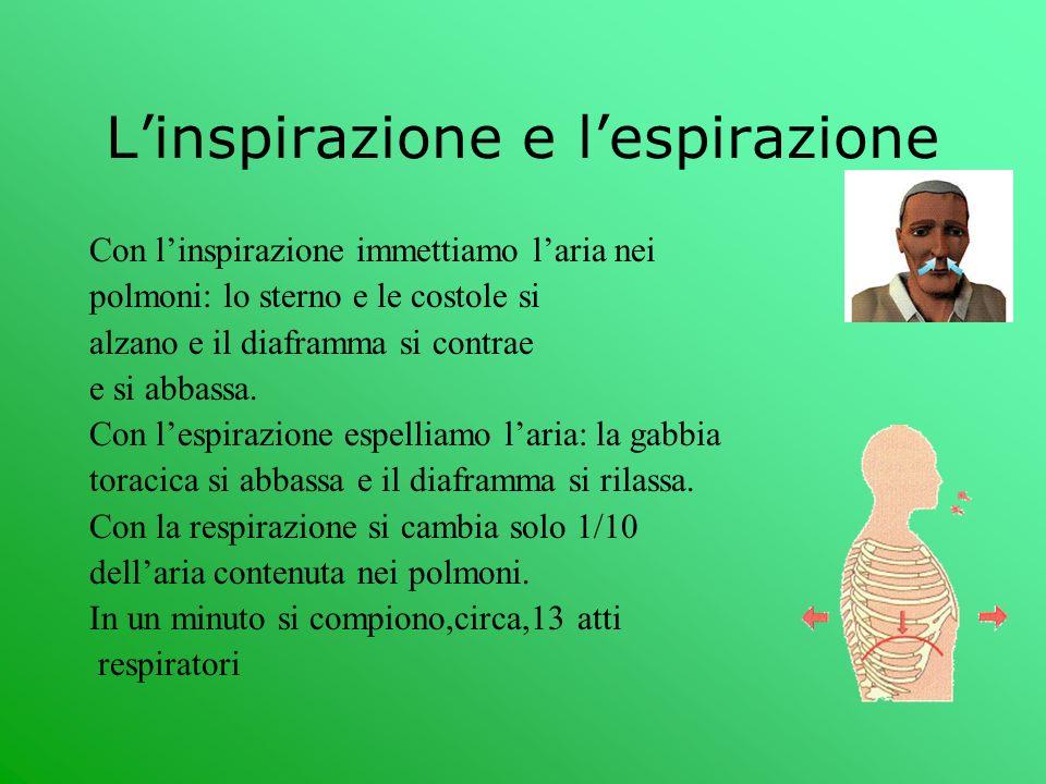 L'inspirazione e l'espirazione