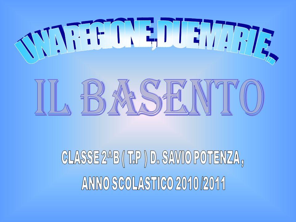 CLASSE 2^B ( T.P ) D. SAVIO POTENZA ,