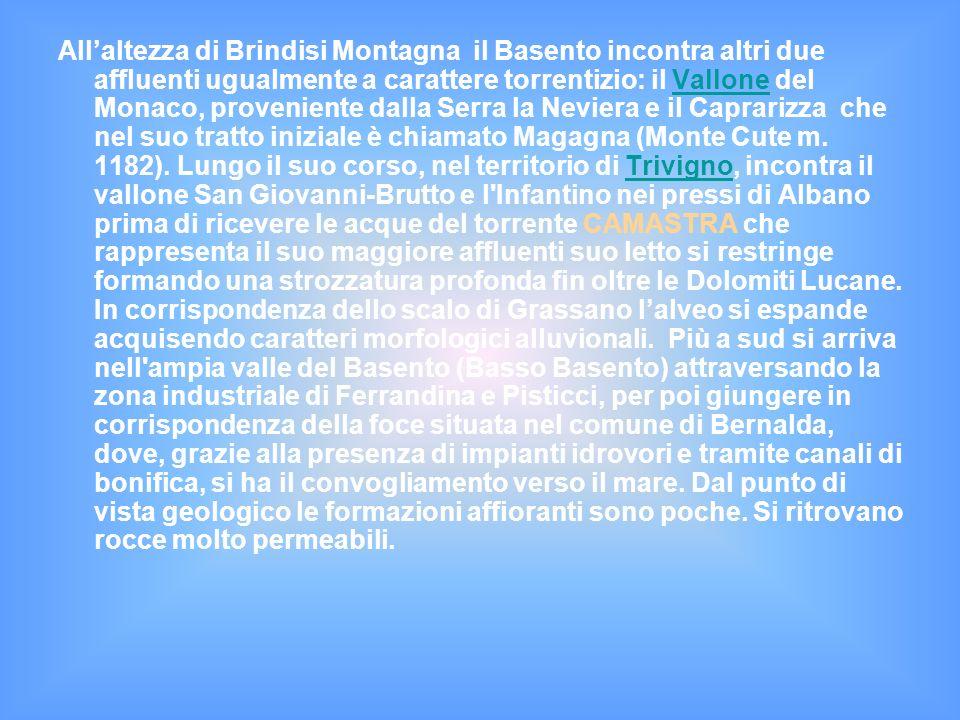 All'altezza di Brindisi Montagna il Basento incontra altri due affluenti ugualmente a carattere torrentizio: il Vallone del Monaco, proveniente dalla Serra la Neviera e il Caprarizza che nel suo tratto iniziale è chiamato Magagna (Monte Cute m.
