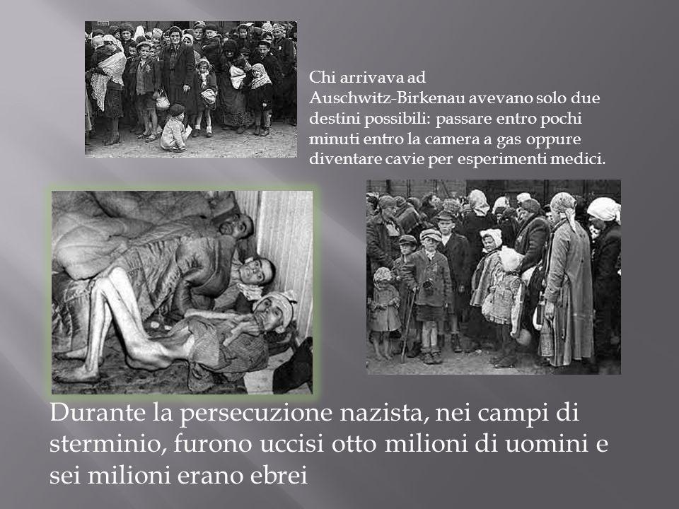 Chi arrivava ad Auschwitz-Birkenau avevano solo due destini possibili: passare entro pochi minuti entro la camera a gas oppure diventare cavie per esperimenti medici.