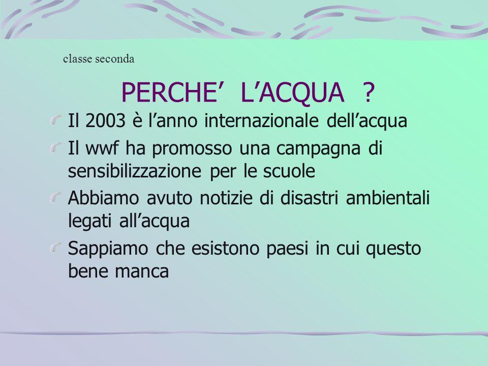 PERCHE' L'ACQUA Il 2003 è l'anno internazionale dell'acqua