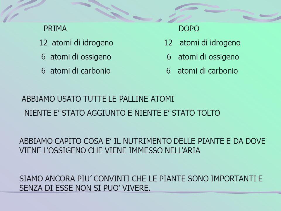PRIMA DOPO 12 atomi di idrogeno 12 atomi di idrogeno.