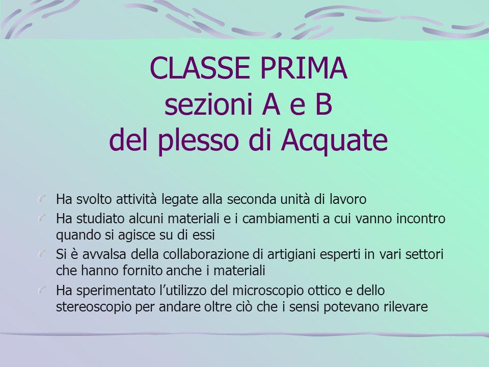 CLASSE PRIMA sezioni A e B del plesso di Acquate