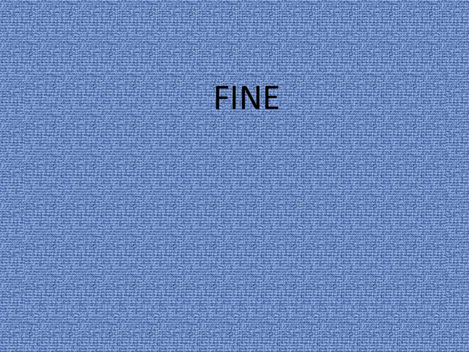 FINE 12