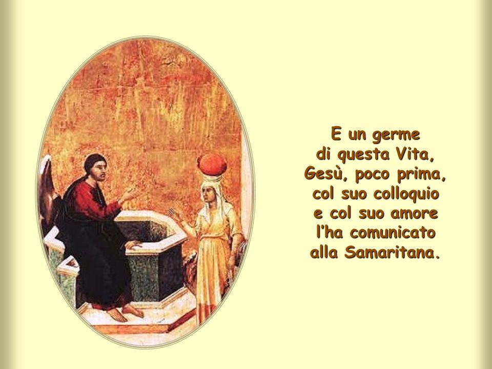 E un germe di questa Vita, Gesù, poco prima, col suo colloquio e col suo amore l'ha comunicato alla Samaritana.