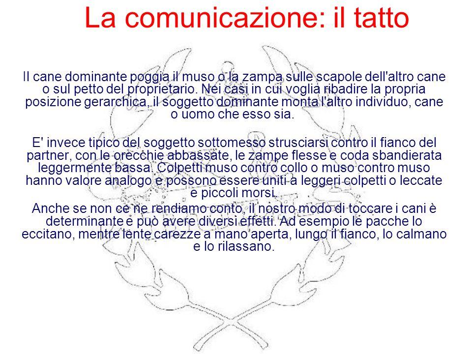 La comunicazione: il tatto
