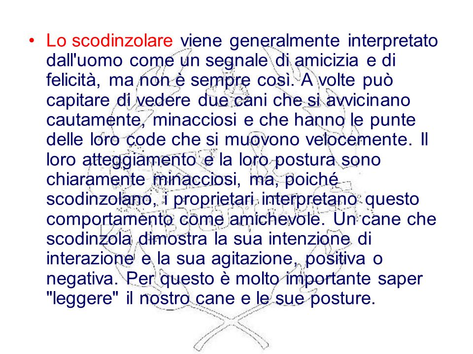 Lo scodinzolare viene generalmente interpretato dall uomo come un segnale di amicizia e di felicità, ma non è sempre così.