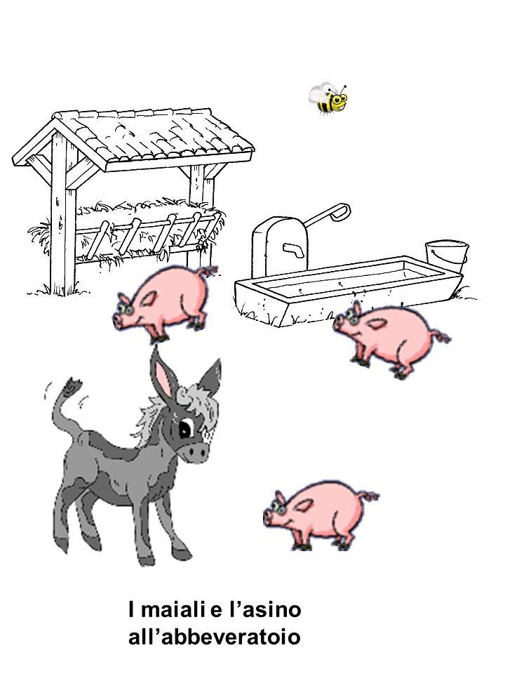 I maiali e l'asino all'abbeveratoio