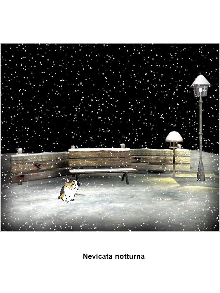 Nevicata notturna