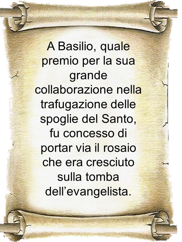 A Basilio, quale premio per la sua grande collaborazione nella trafugazione delle spoglie del Santo, fu concesso di portar via il rosaio che era cresciuto sulla tomba dell'evangelista.