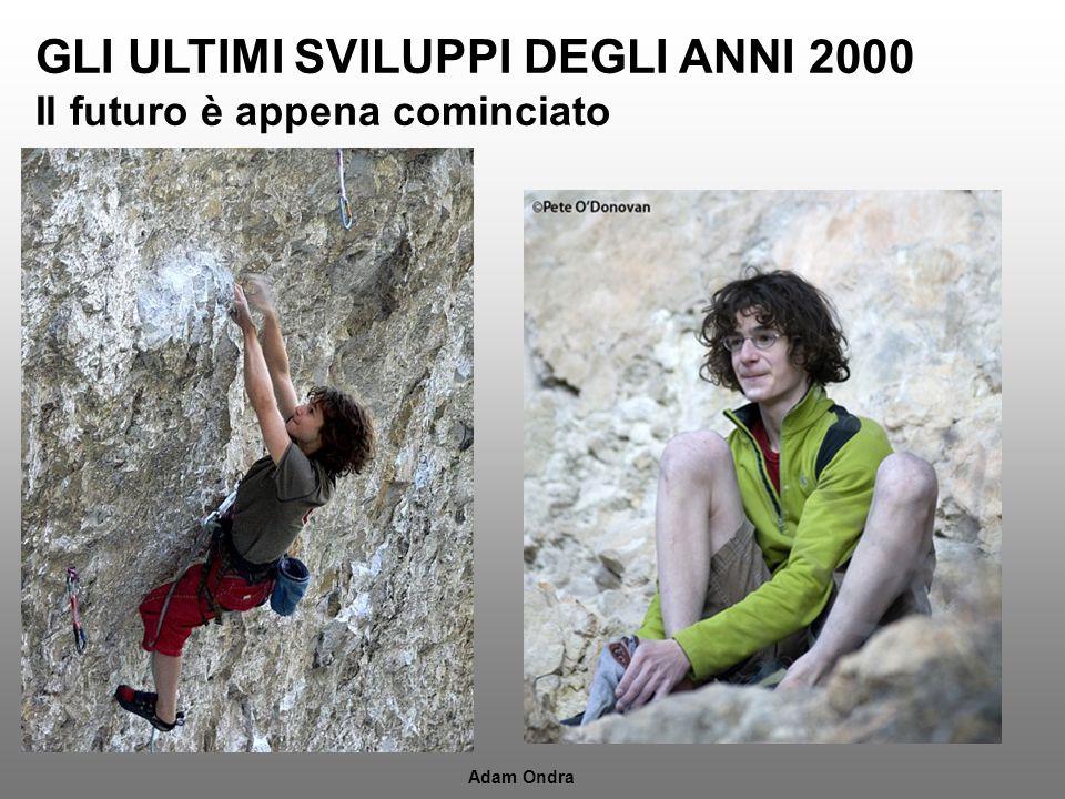 GLI ULTIMI SVILUPPI DEGLI ANNI 2000