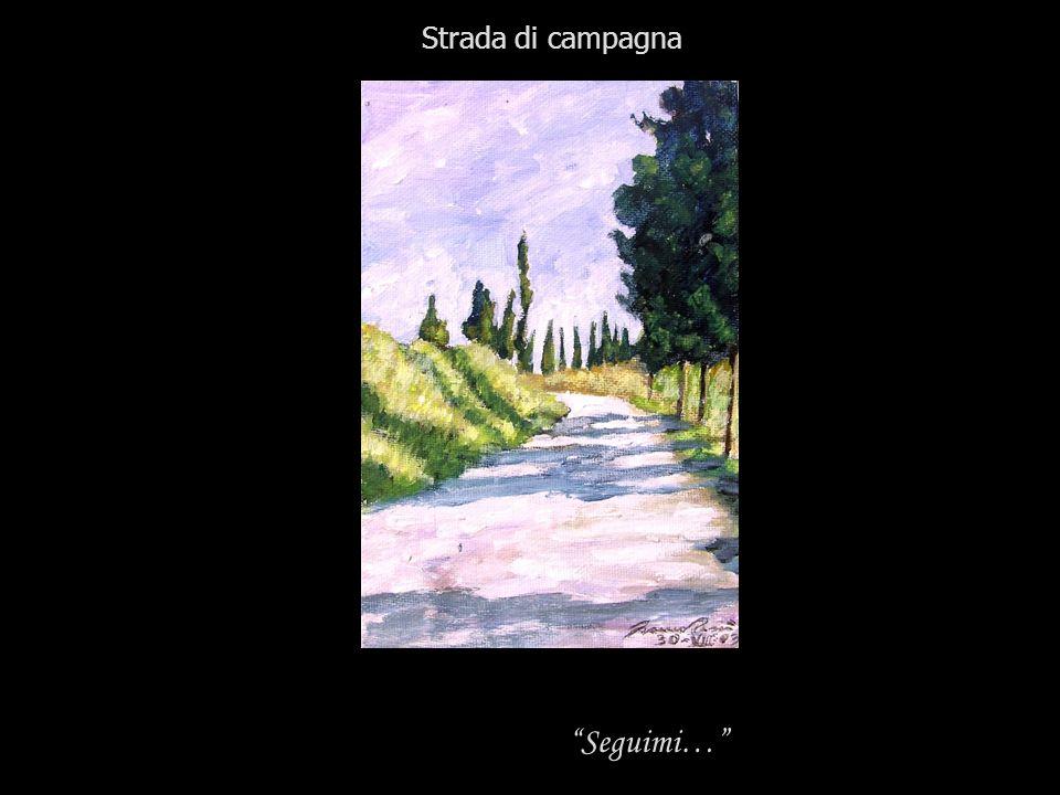 Strada di campagna Seguimi…