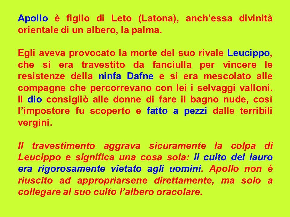 Apollo è figlio di Leto (Latona), anch'essa divinità orientale di un albero, la palma.