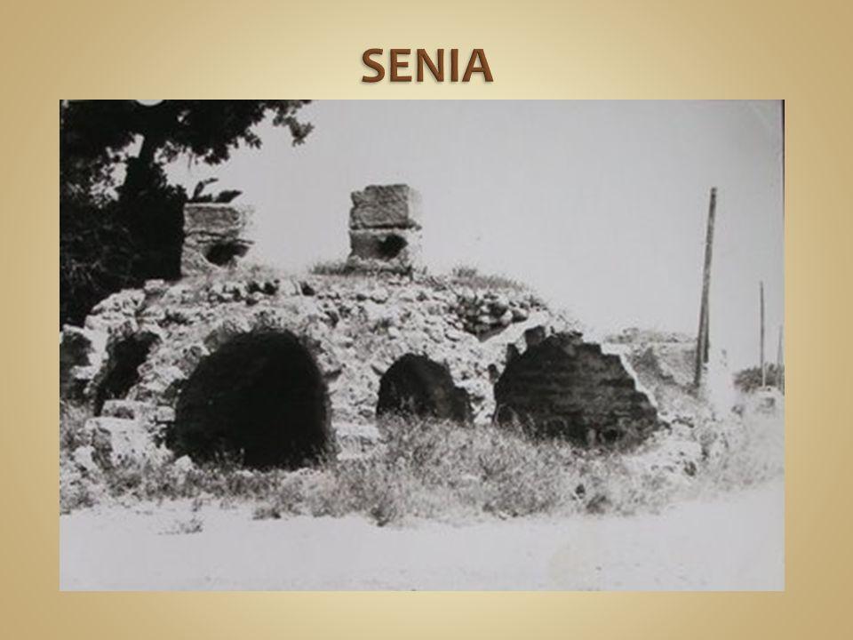 SENIA