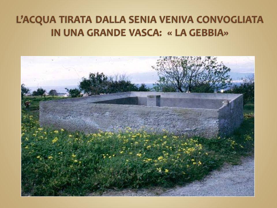 L'ACQUA TIRATA DALLA SENIA VENIVA CONVOGLIATA IN UNA GRANDE VASCA: « LA GEBBIA»