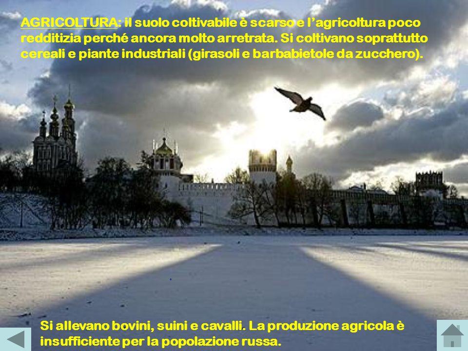 AGRICOLTURA: il suolo coltivabile è scarso e l'agricoltura poco redditizia perché ancora molto arretrata. Si coltivano soprattutto cereali e piante industriali (girasoli e barbabietole da zucchero).