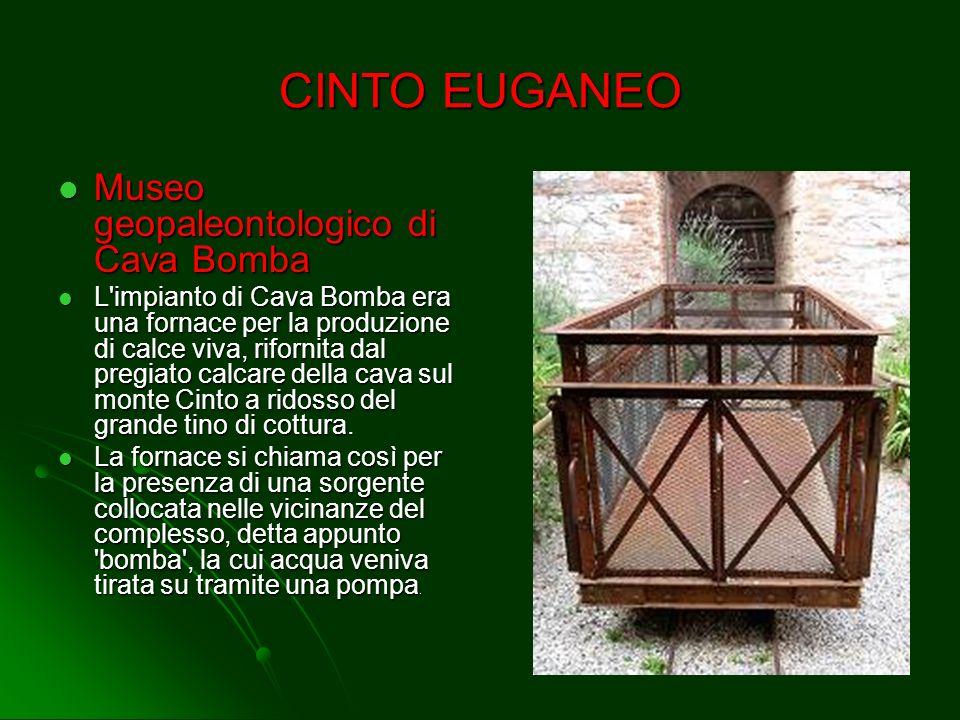 CINTO EUGANEO Museo geopaleontologico di Cava Bomba