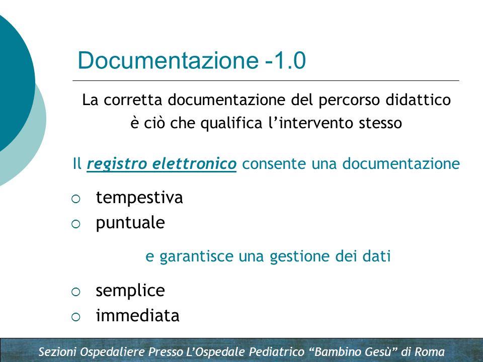 Documentazione -1.0 tempestiva puntuale semplice immediata