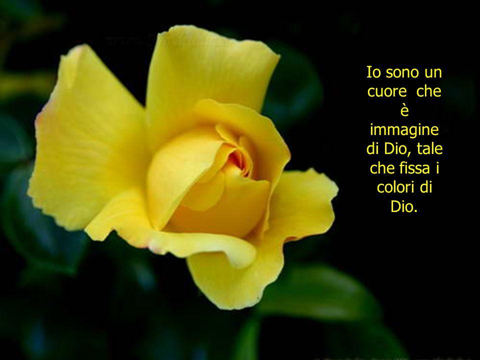 Io sono un cuore che è immagine di Dio, tale che fissa i colori di Dio.