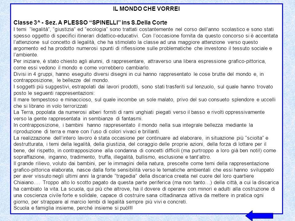 Classe 3^ - Sez. A PLESSO SPINELLI ins S.Della Corte