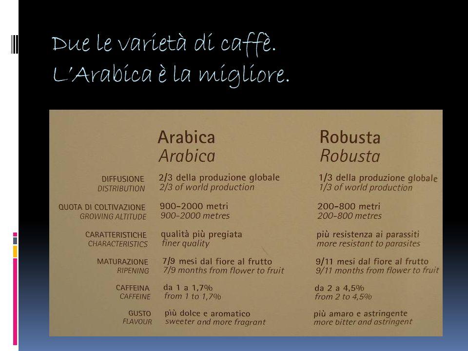Due le varietà di caffè. L'Arabica è la migliore.