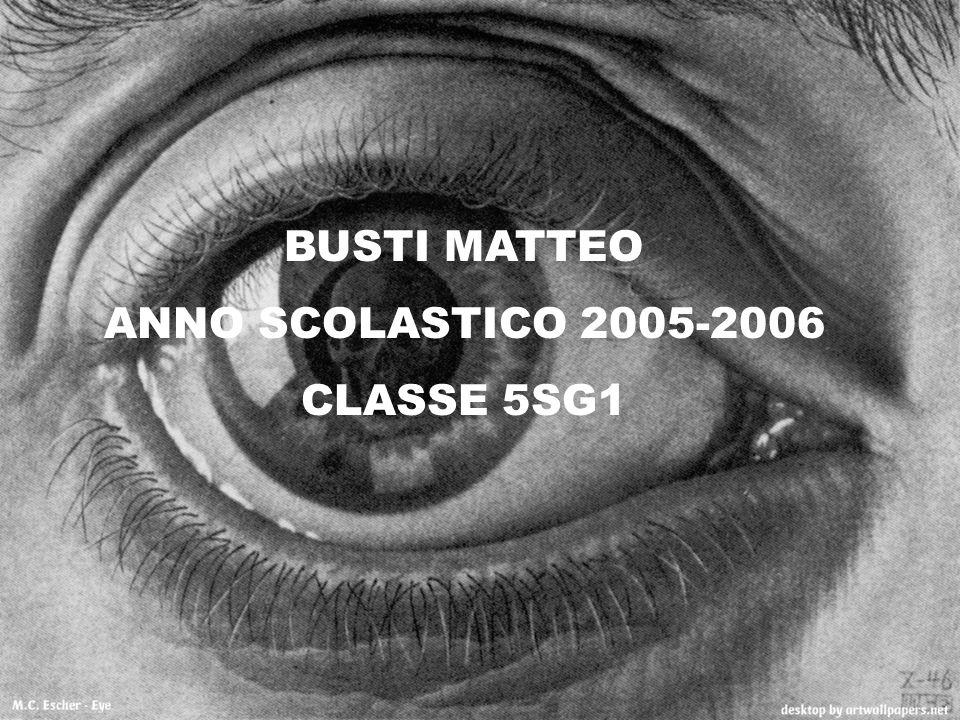 BUSTI MATTEO ANNO SCOLASTICO 2005-2006 CLASSE 5SG1