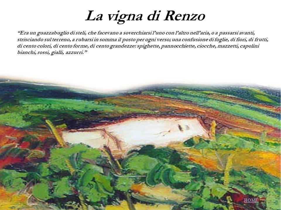 La vigna di Renzo