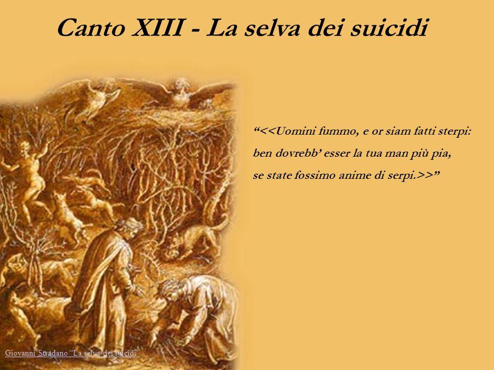 Canto XIII - La selva dei suicidi