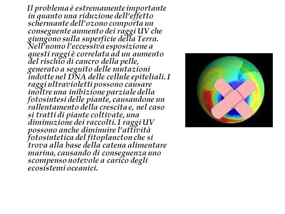 Il problema è estremamente importante in quanto una riduzione dell'effetto schermante dell'ozono comporta un conseguente aumento dei raggi UV che giungono sulla superficie della Terra.