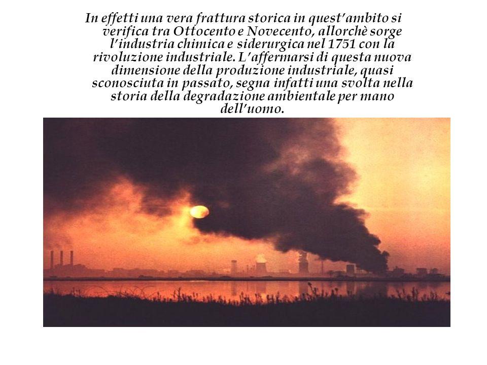 In effetti una vera frattura storica in quest'ambito si verifica tra Ottocento e Novecento, allorchè sorge l'industria chimica e siderurgica nel 1751 con la rivoluzione industriale.