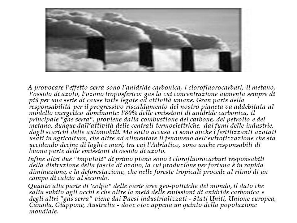 A provocare l'effetto serra sono l'anidride carbonica, i clorofluorocarburi, il metano, l'ossido di azoto, l'ozono troposferico: gas la cui concentrazione aumenta sempre di più per una serie di cause tutte legate ad attività umane. Gran parte della responsabilità per il progressivo riscaldamento del nostro pianeta va addebitata al modello energetico dominante: l'80% delle emissioni di anidride carbonica, il principale gas serra , proviene dalla combustione del carbone, del petrolio e del metano, dunque dall'attività delle centrali termoelettriche, dai fumi delle industrie, dagli scarichi delle automobili. Ma sotto accusa ci sono anche i fertilizzanti azotati usati in agricoltura, che oltre ad alimentare il fenomeno dell'eutrofizzazione che sta uccidendo decine di laghi e mari, tra cui l'Adriatico, sono anche responsabili di buona parte delle emissioni di ossido di azoto.