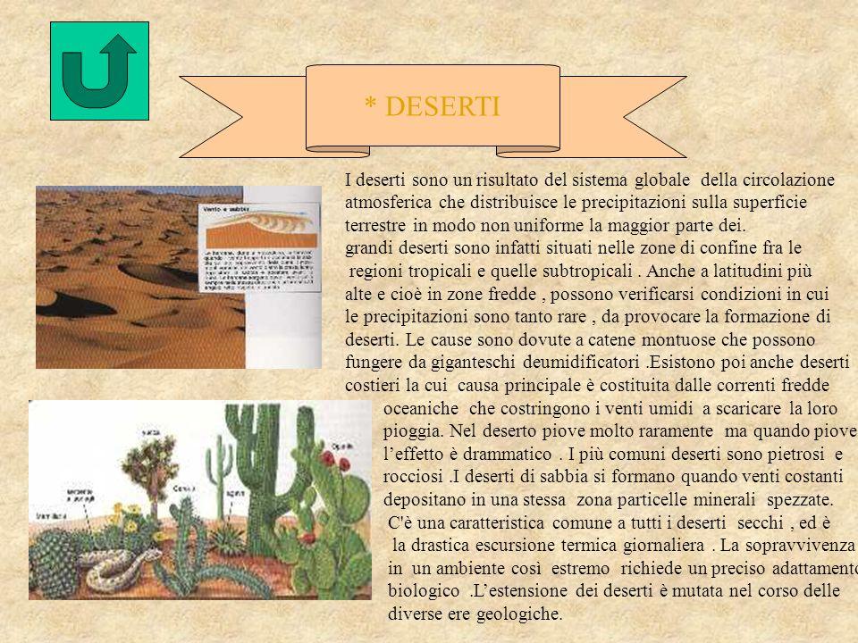 * DESERTI I deserti sono un risultato del sistema globale della circolazione atmosferica che distribuisce le precipitazioni sulla superficie.