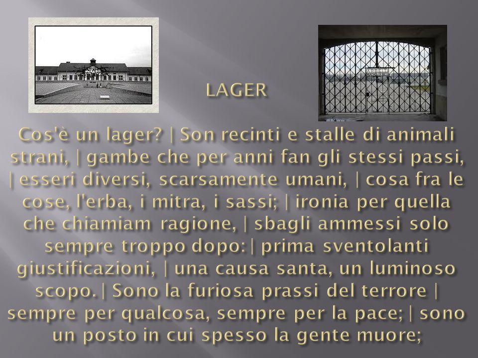 LAGER Cos è un lager.