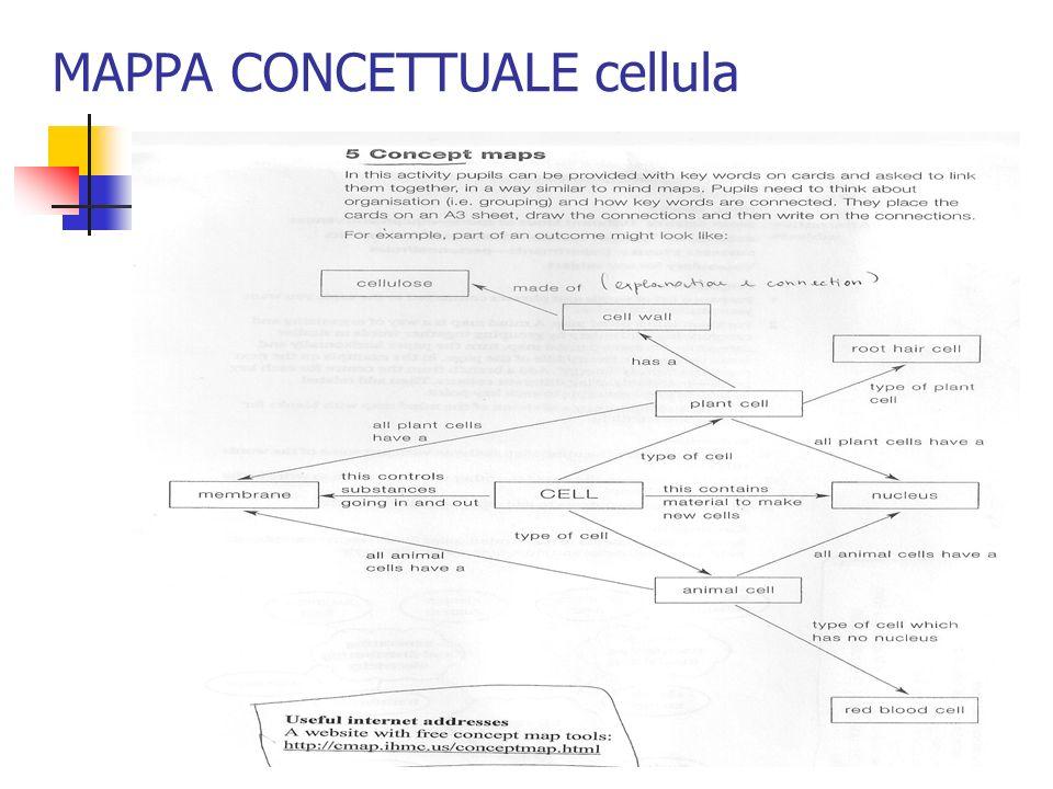 MAPPA CONCETTUALE cellula