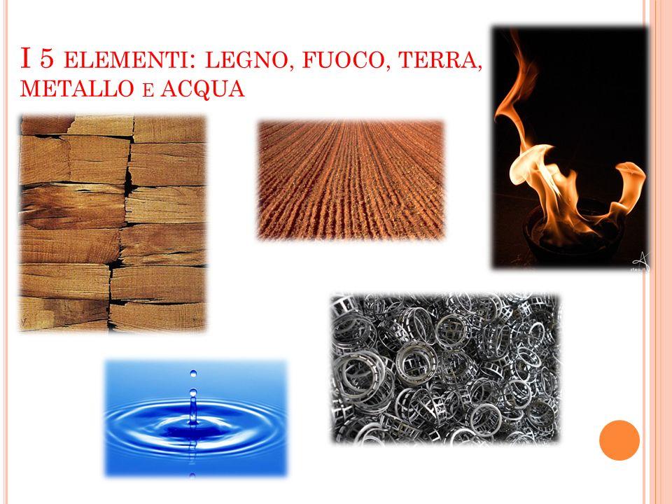 I 5 elementi: LEGNO, FUOCO, TERRA, METALLO e ACQUA