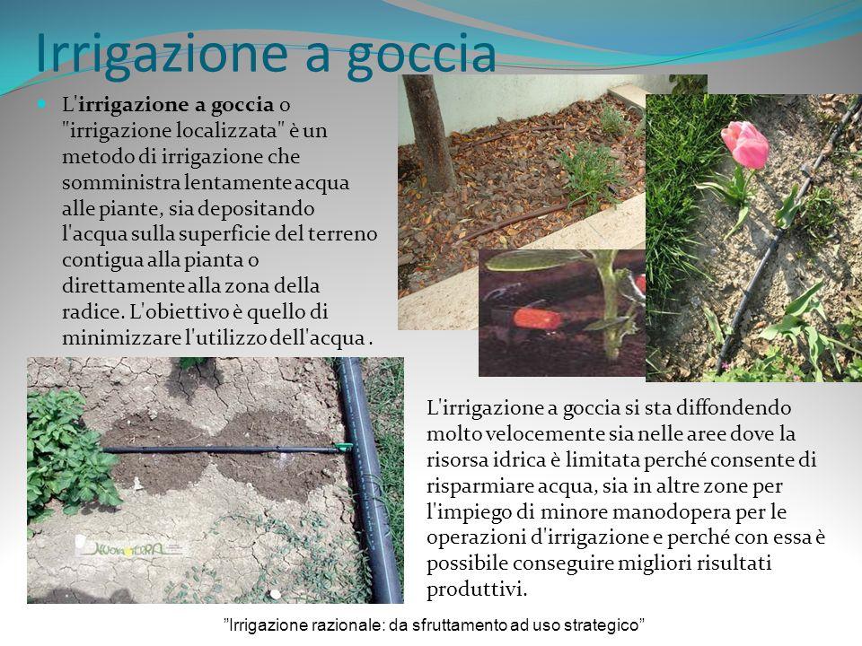 Irrigazione razionale: da sfruttamento ad uso strategico