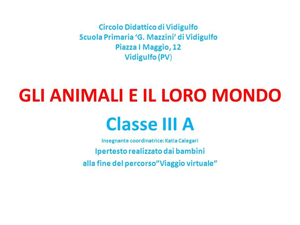 GLI ANIMALI E IL LORO MONDO Classe III A