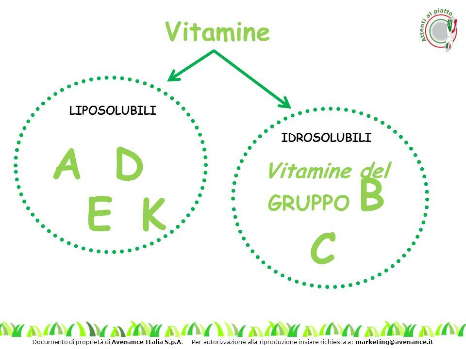 Vitamine LIPOSOLUBILI IDROSOLUBILI A D Vitamine del GRUPPO B E K C