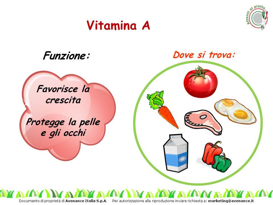 Vitamina A Funzione: Dove si trova: Favorisce la crescita